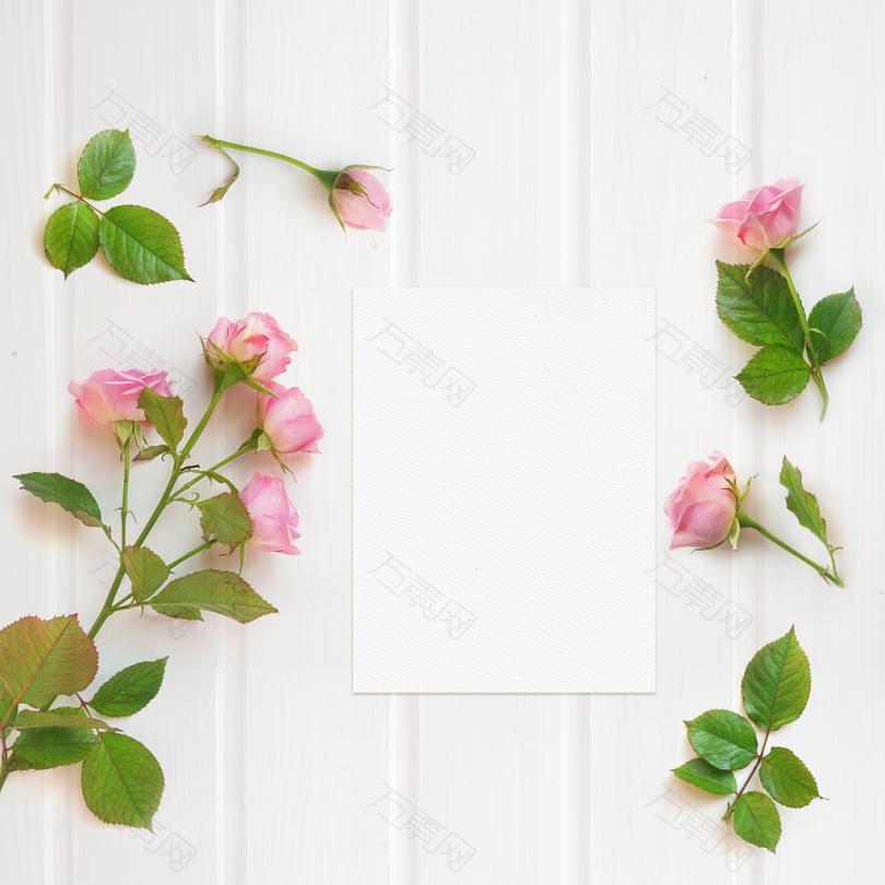 白色木面上的粉红玫瑰