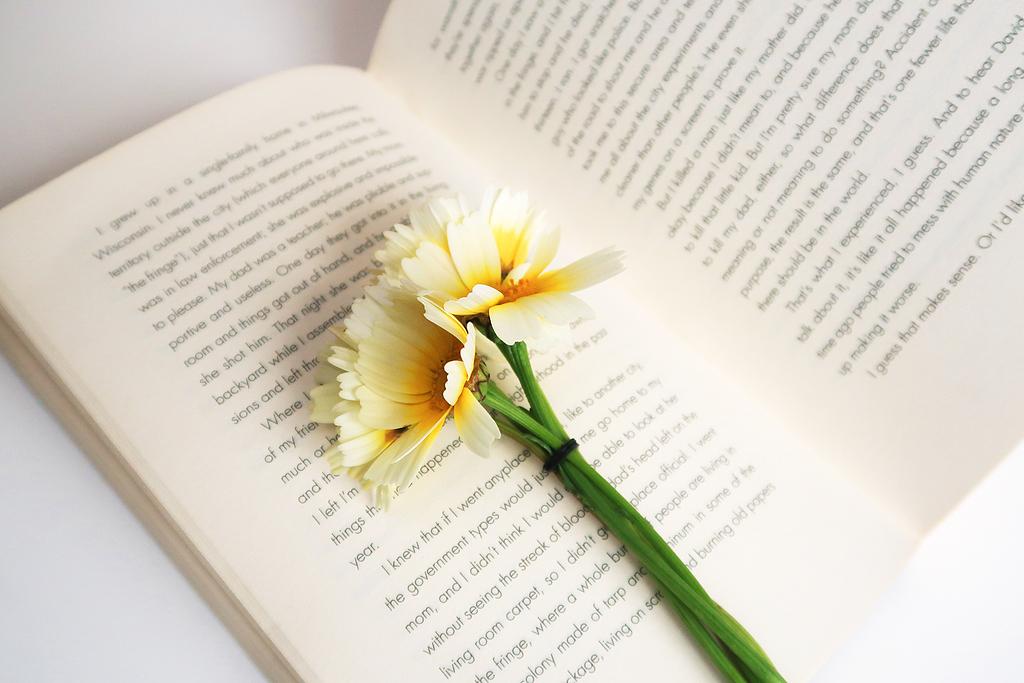 白色和黄色的花在白色的开着的书上