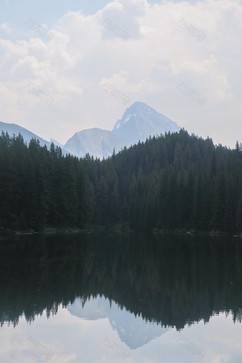 白天的森林水的身体和云朵