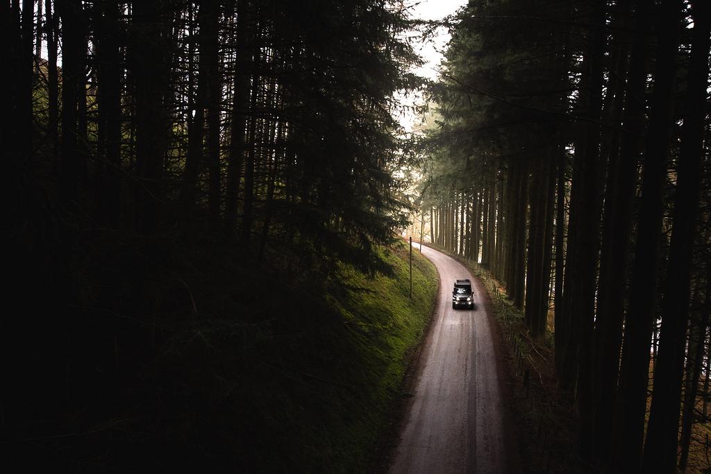 林间公路上的黑车