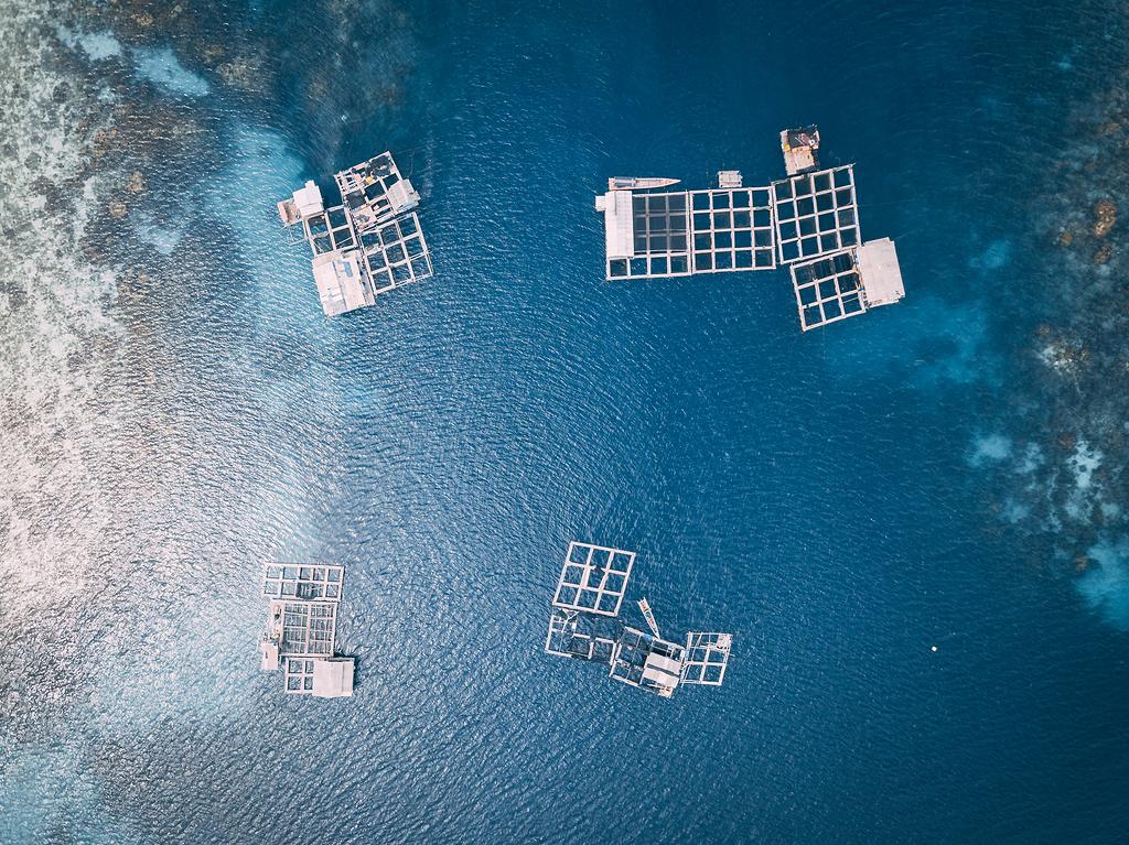 水面上白色框架的航空摄影